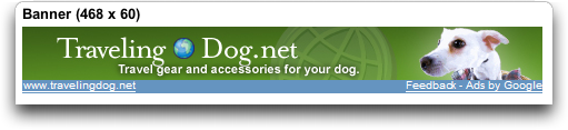 Google AdSense sample banner graphic