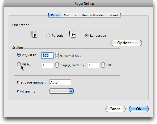 Microsoft Excel: Print: Page Setup