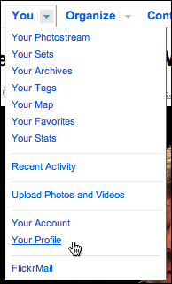 flickr you menu