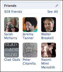 facebook profile friends count