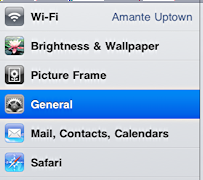 ipad settings general