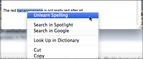 how to change spelling on mac word