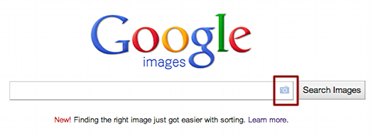 google image search 1