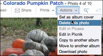 picasa upload photo album 10