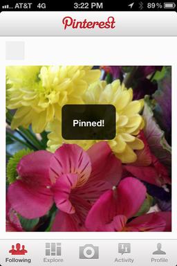 pinterest iphone upload pin photo 8