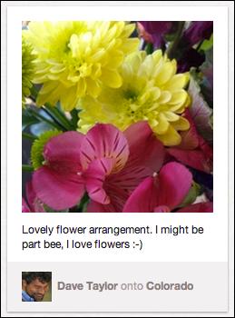 pinterest pretty flowers pin