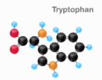 turkey tryptophan chemistry chemical