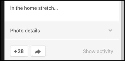 detail of photo display details google+