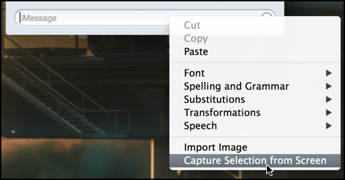 capture screen area within messages mac os x