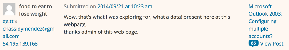 overt spammy comment from wordpress