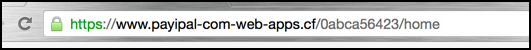 fake domain that is spoofing paypal. avoid avoid avoid!