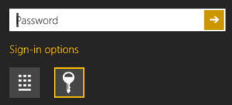 enter your password windows 8