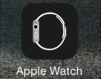 apple watch app icon iphone 6 plus firmware update