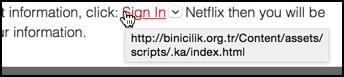 definitely not a link to netflix