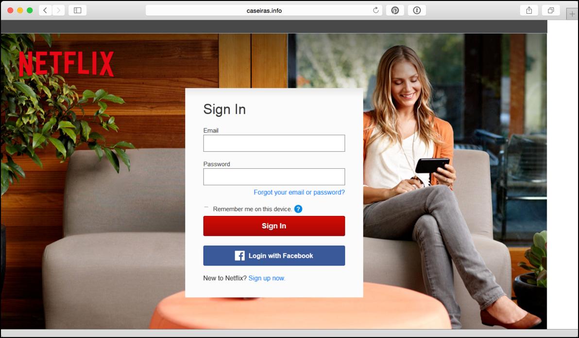 fake netflix phishing login screen page site
