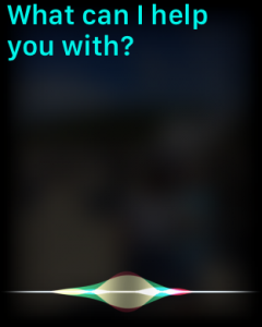 Siri display what can i help you with?  prompt apple watch