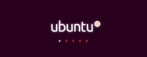 start of Ubuntu installation process