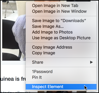 inspect element from context menu, apple safari
