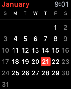 month at a glance, ical calendar view, apple watch os 2