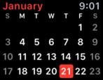 ical calendar apple watch sport edition tips tricks help