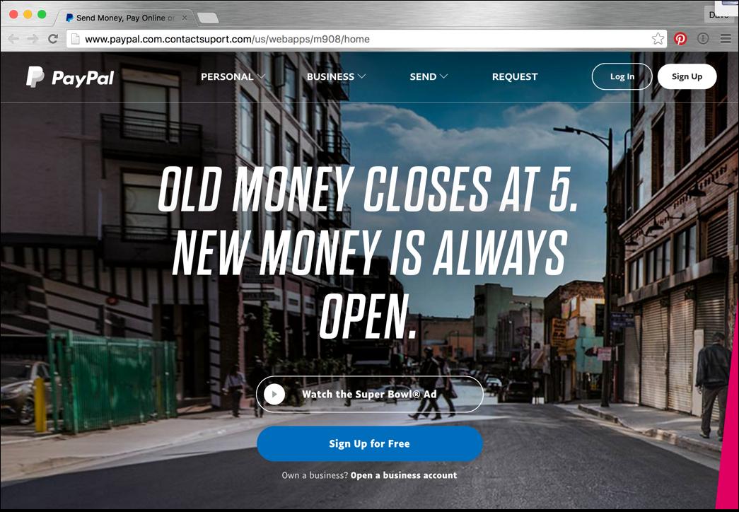 bogus phishing paypal web page