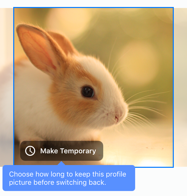 How can I set a temporary Facebook profile picture? - Ask ...
