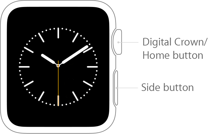 apple watch labelled buttons