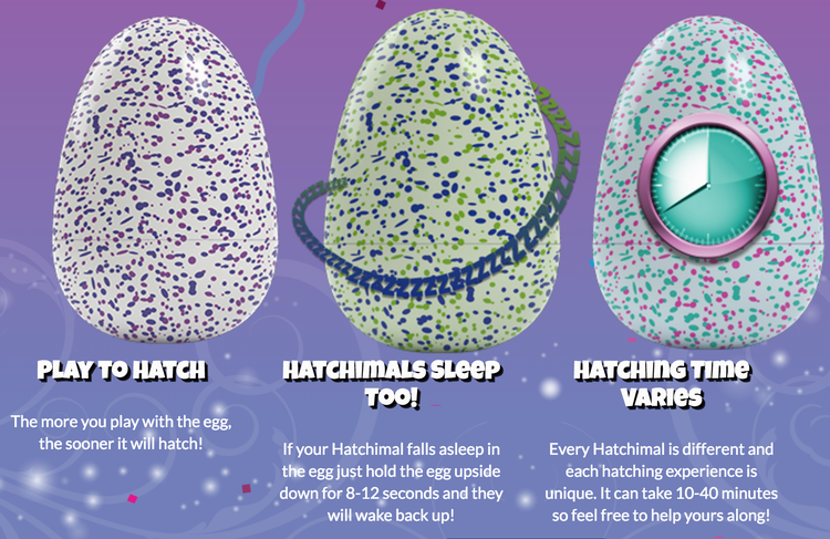 hatchimals info