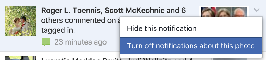 """turn off notifications"" facebook status web browser settings"