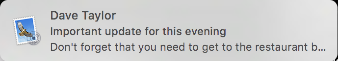 standard apple mail notification window