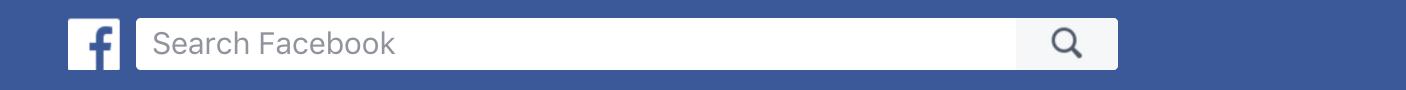 facebook search box