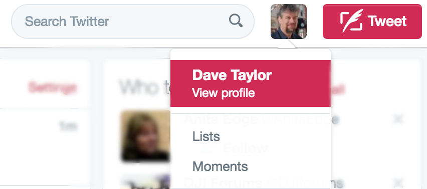 twitter > view profile