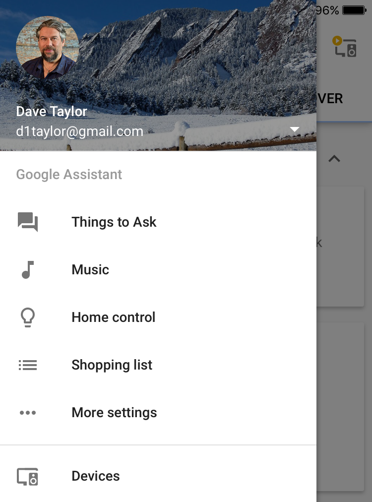 google home app settings preferences