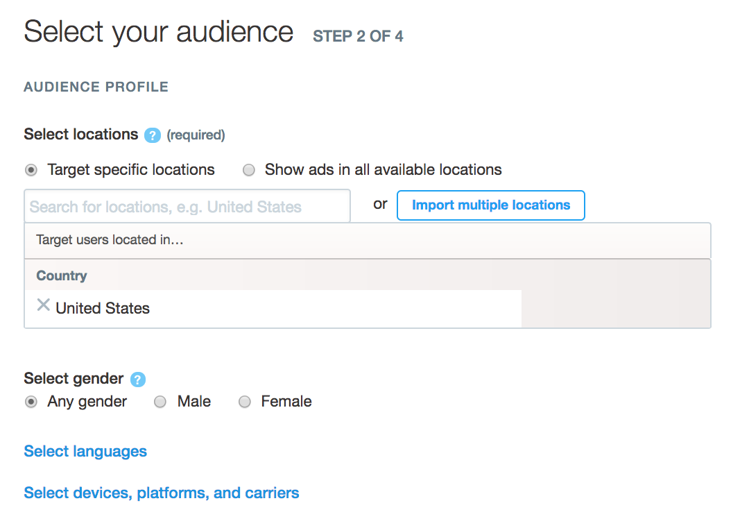 specify your twitter ad audience