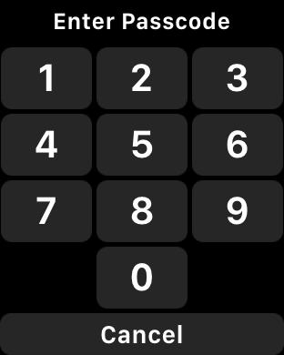 enter apple watch pin passcode