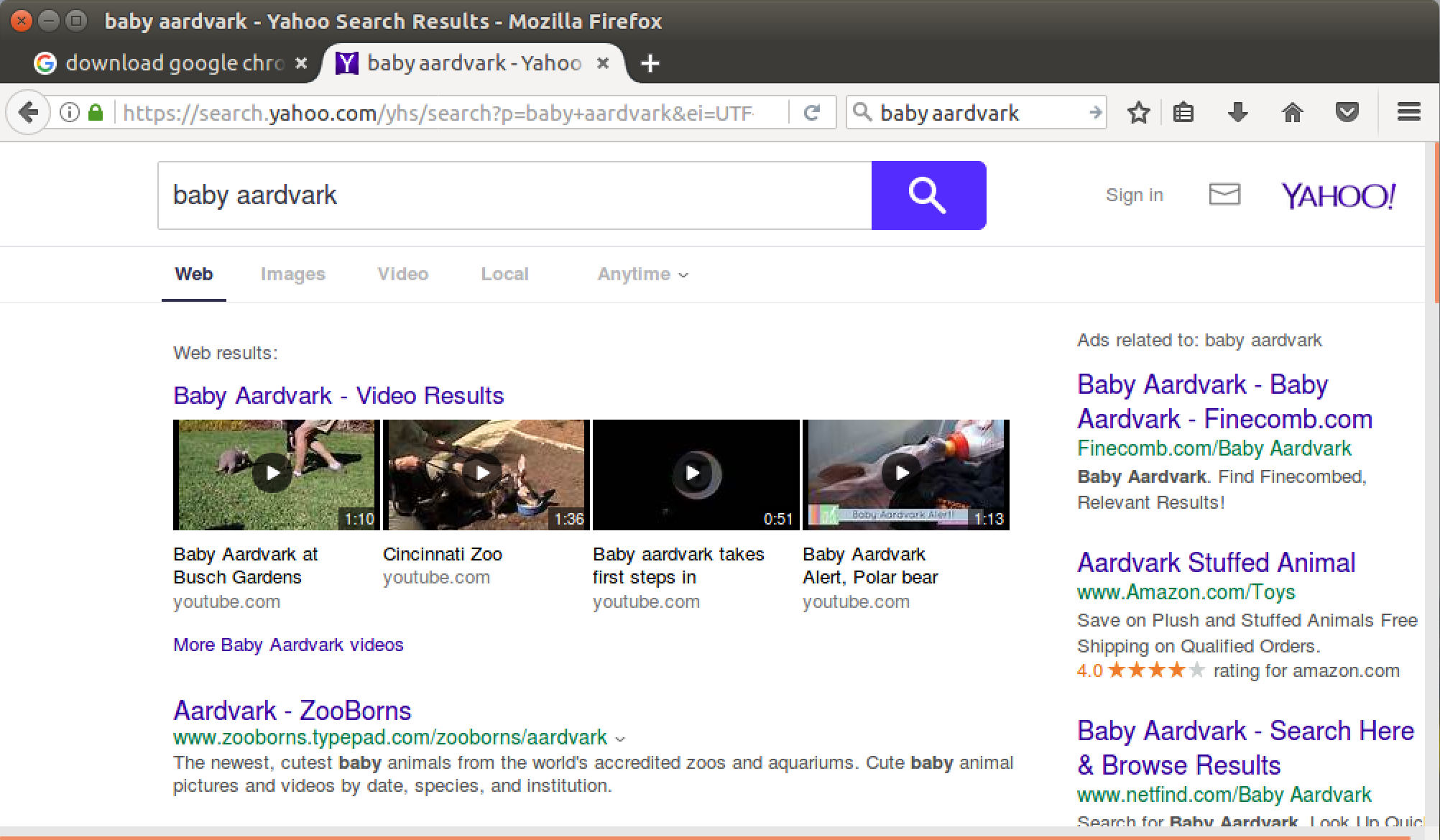 baby aardvark search, yahoo