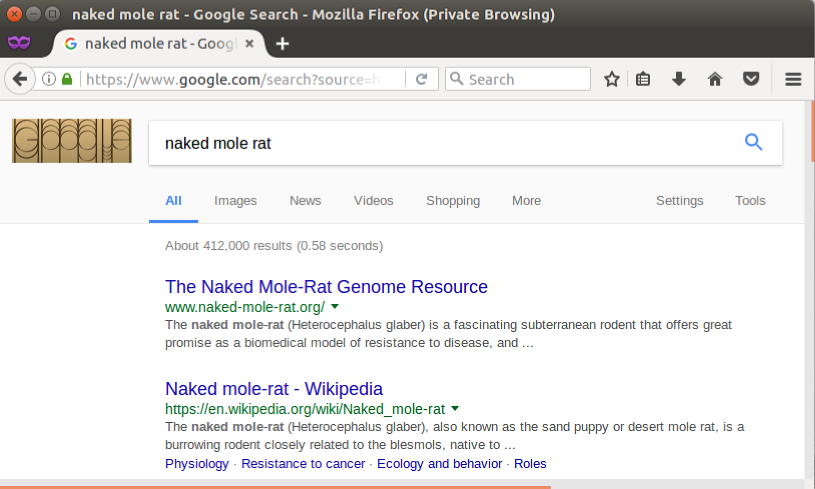google search - naked mole rat - in firefox private mode