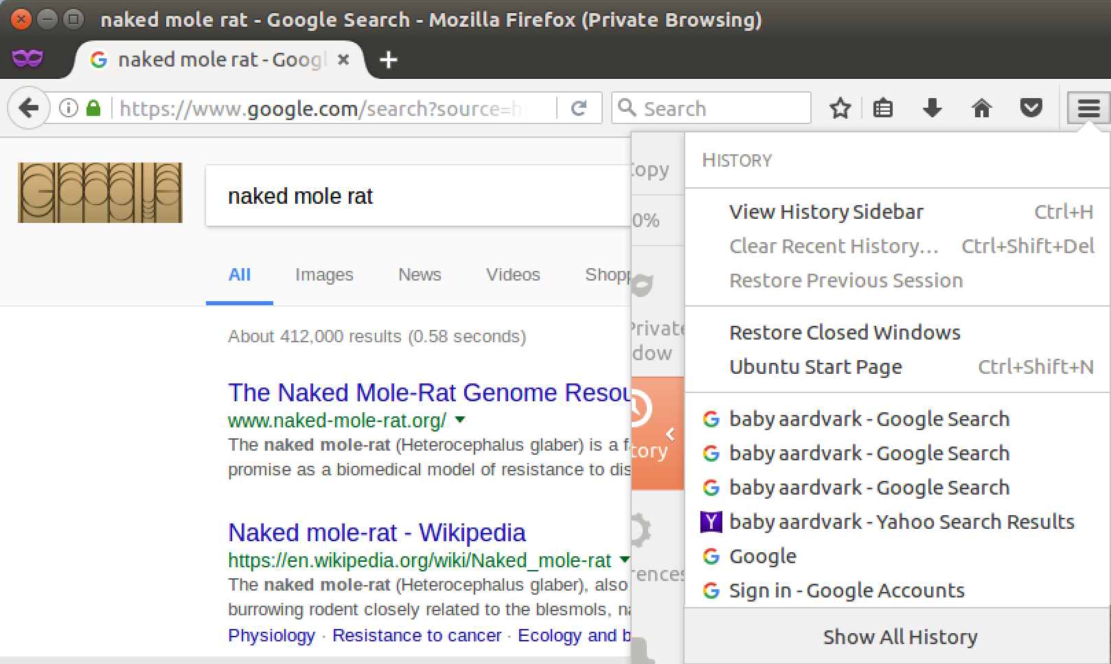 private browsing hides google searches, firefox