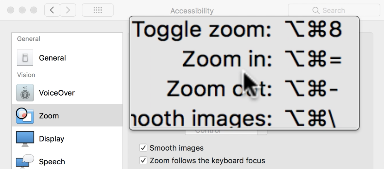 mac accessibility zoom window