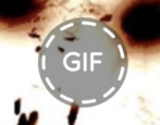 convert gif png facebook animated gif fix repair