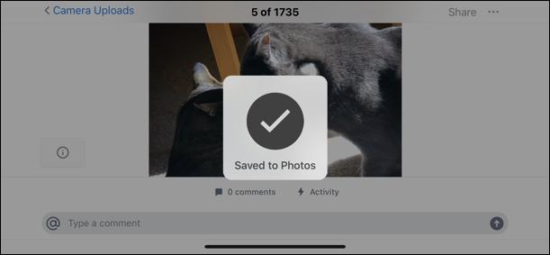 photo saved to camera roll, iphone dropbox ipad