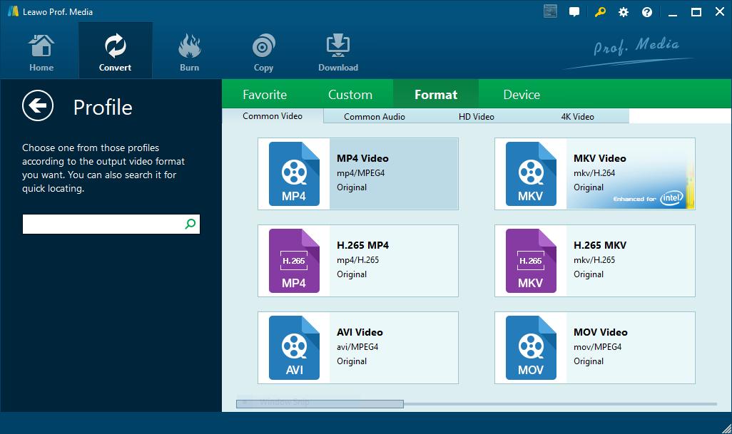 default output formats, bd ripper, laewo software