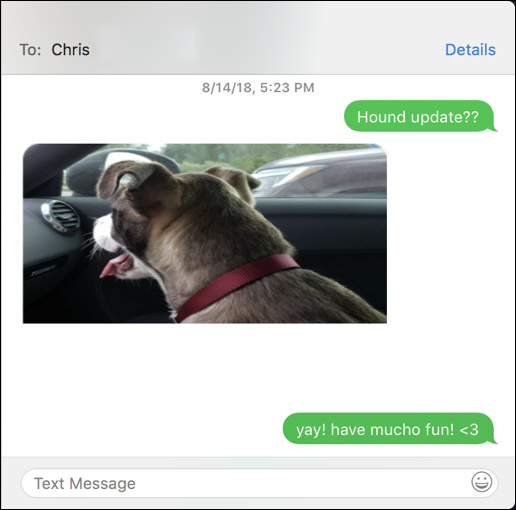 macos x messsages - cute dog