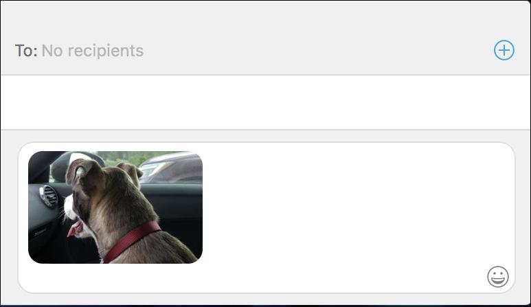mac messages - forward photo
