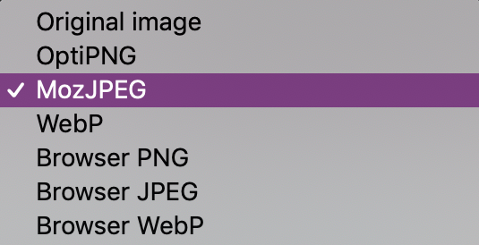 squoosh image compression algorithm format options
