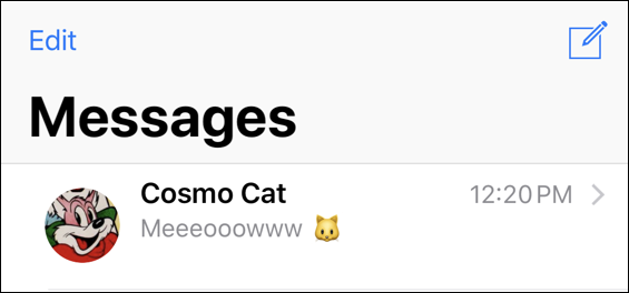text message to/from cosmo cat photo iphone