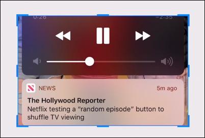 cropped iphone screenshot