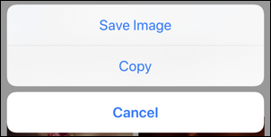 ios apple iphone safari: save image / copy / cancel