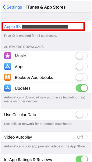itunes and app store settings ios iphone
