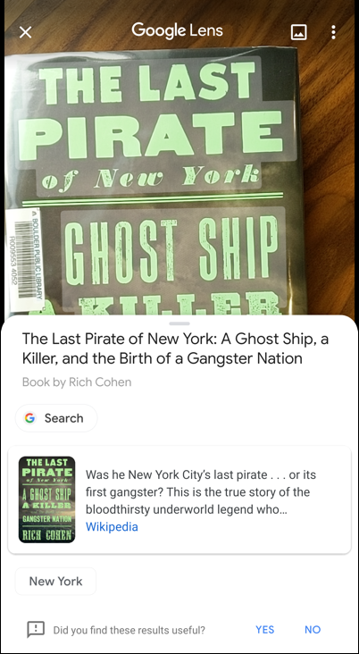 google lens - id book - the last pirate